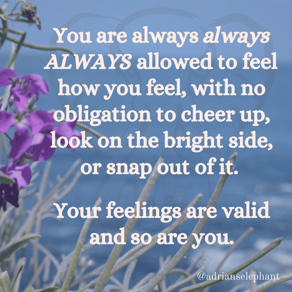 You are always always ALWAYS allowed to feel how you feel, with no obligation to cheer up, look on the bright side, or snap out of it. Your feelings are valid and so are you.