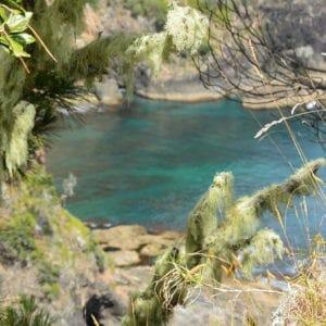 Bay of Islands, New Zealand (Miranda Hernandez)