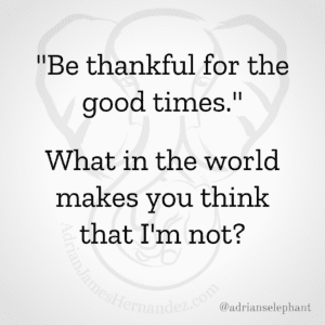 """""""Be thankful for the good times."""" …What in the world makes you think I'm not?"""
