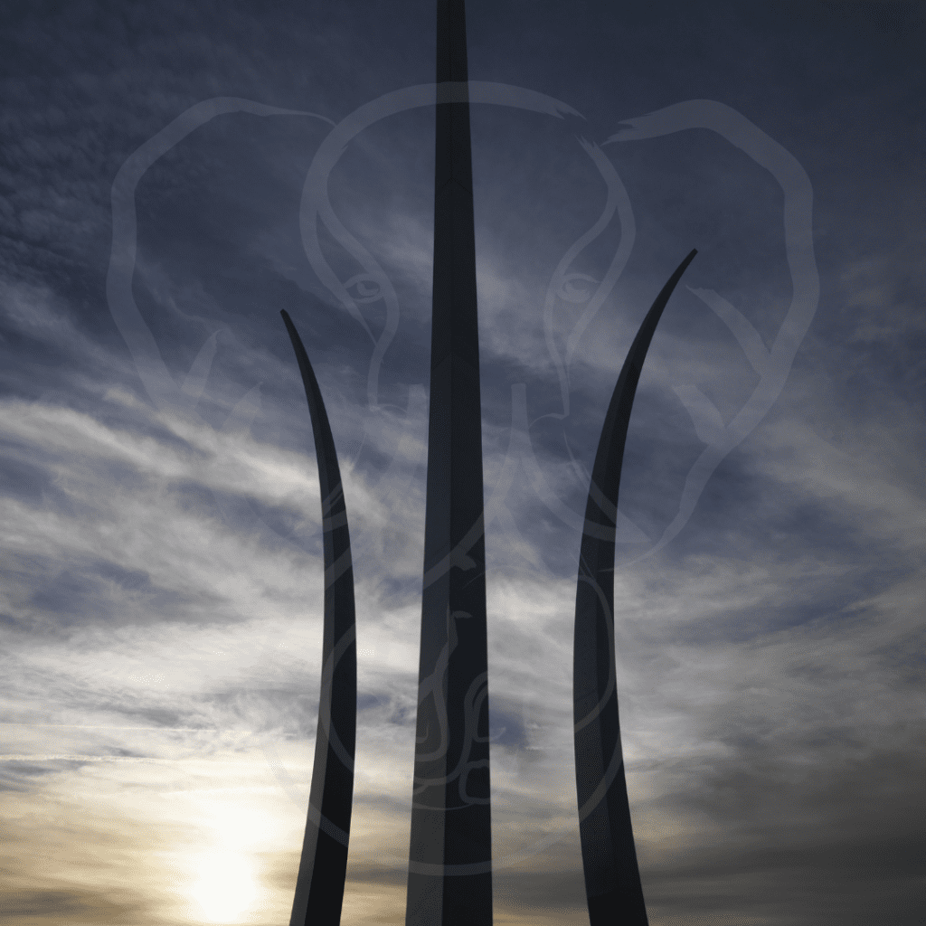 Image of the Air Force memorial at sunset, with the Adrian's Elephant logo superimposed on top (photo from Canva)