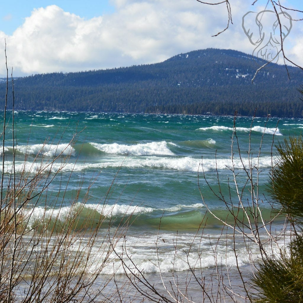 Heavy waves on a sunny day on the shores of North Lake Tahoe (Miranda Hernandez)