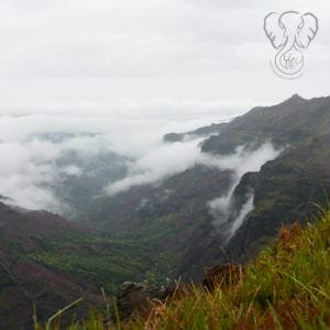 View from the top of Waimea Canyon, mountains covered in fog, Kaua'i, Hawai'i (Luna Kai Photography)