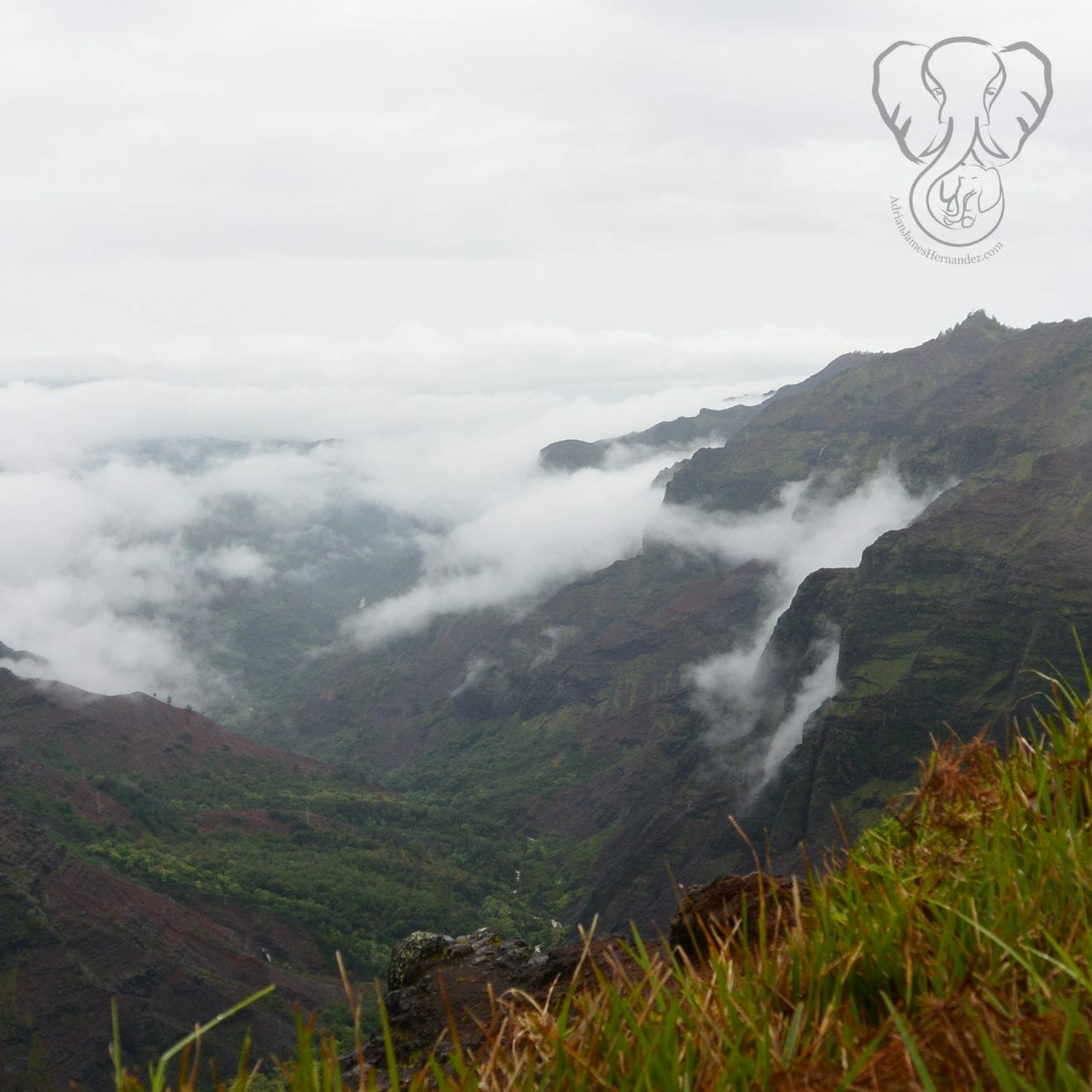 View from the top of Waimea Canyon, mountains covered in fog, Kaua'i, Hawai'i (Luna Kai Photography)