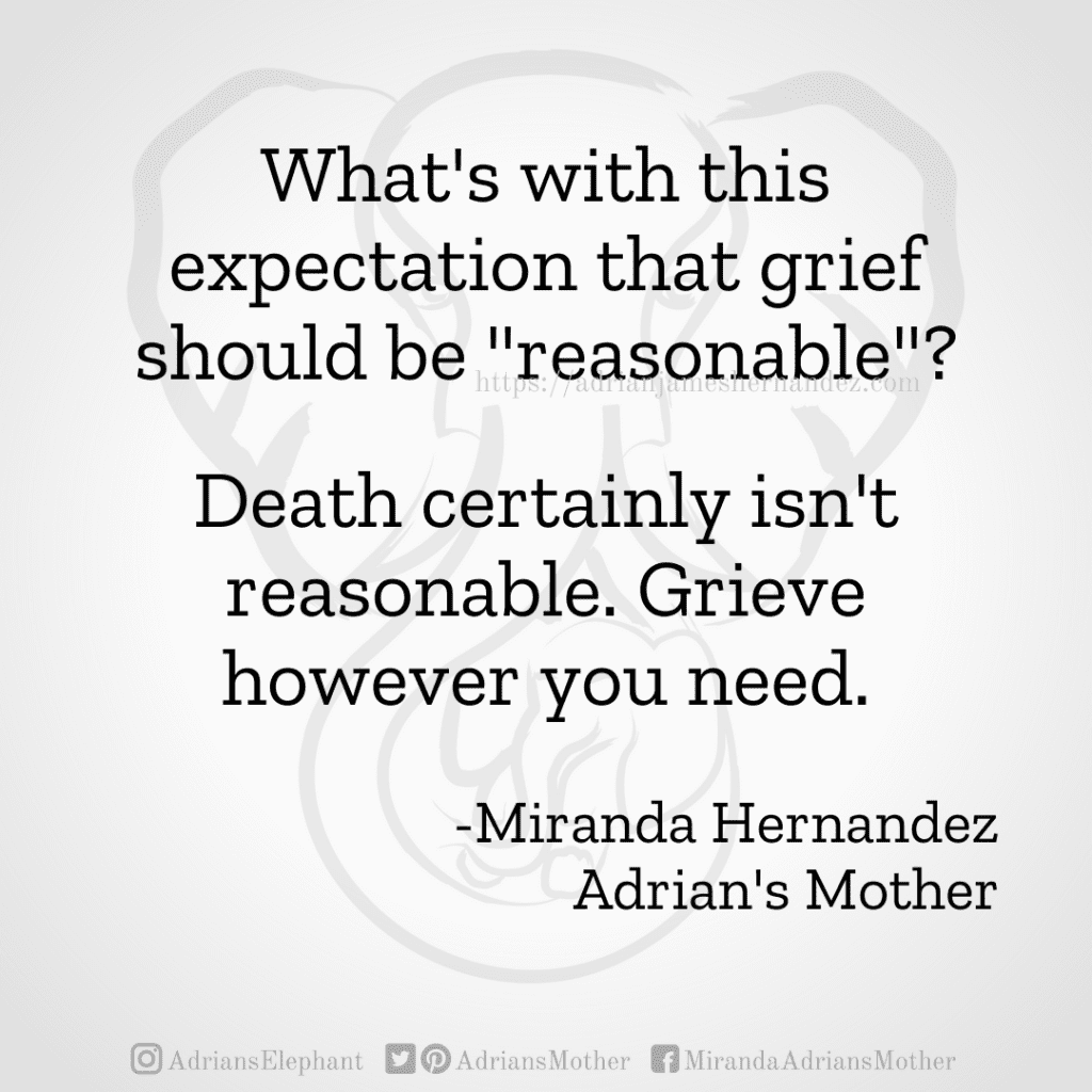 """What's with this expectation that grief should be """"reasonable""""?  Death certainly isn't reasonable. Grieve however you need.  -Miranda Hernandez Adrian's Mother"""