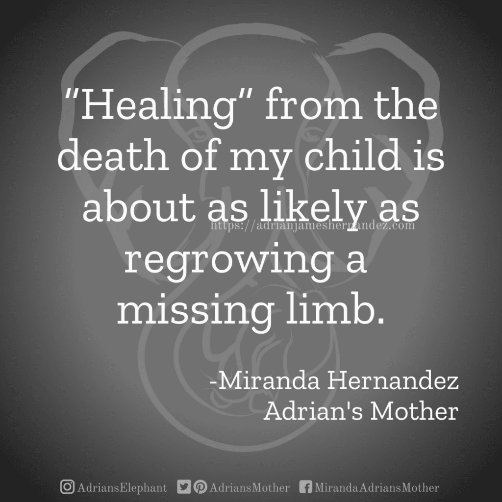 """""""Healing"""" from the death of my child is about as likely as regrowing a missing limb.  -Miranda Hernandez Adrian's Mother"""