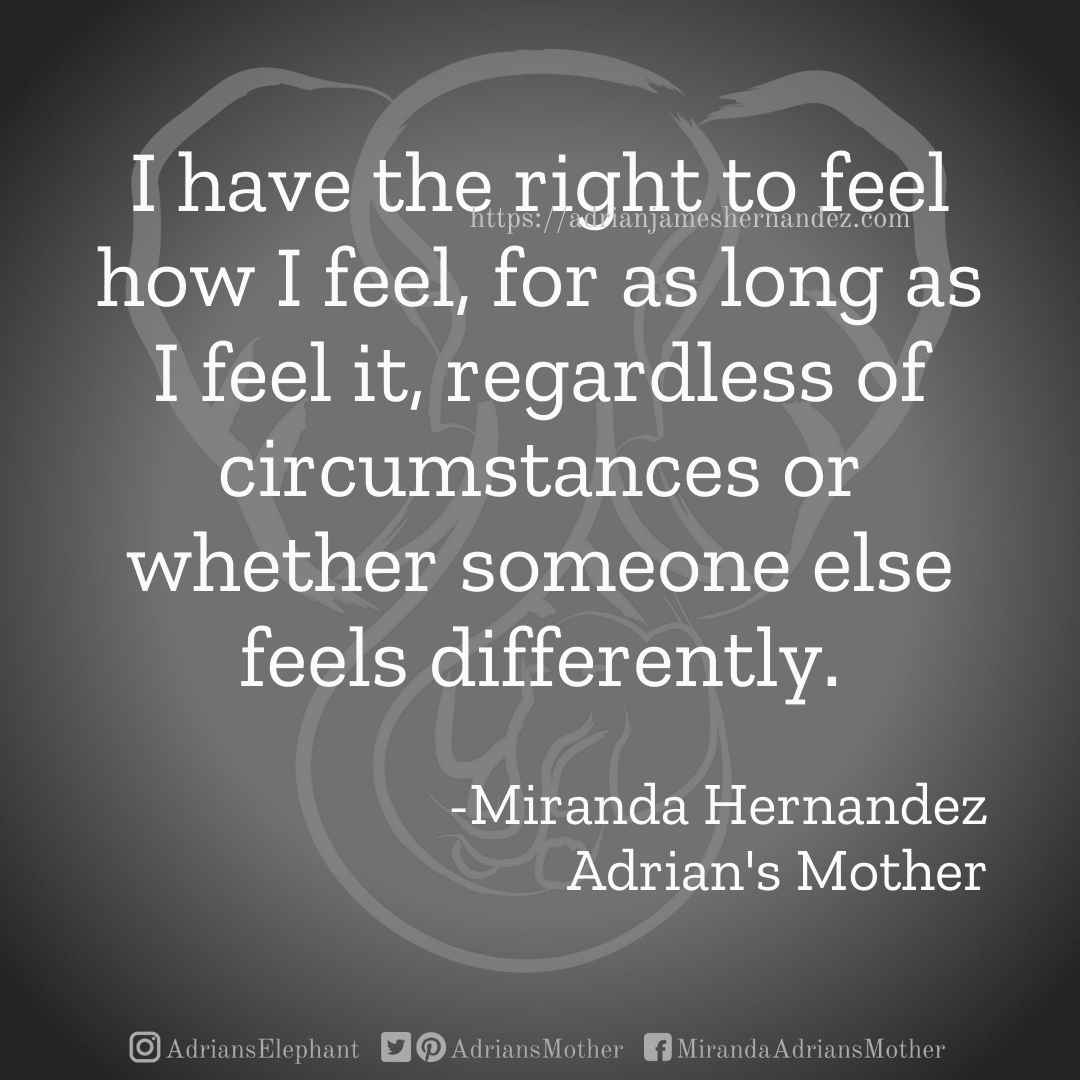 I have the right to feel how I feel, for as long as I feel it, regardless of circumstances  or whether someone else  feels differently.  -Miranda Hernandez Adrian's Mother