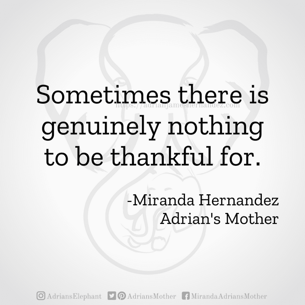 Sometimes there is genuinely nothing to be thankful for. - Miranda Hernandez, Adrian's Mother