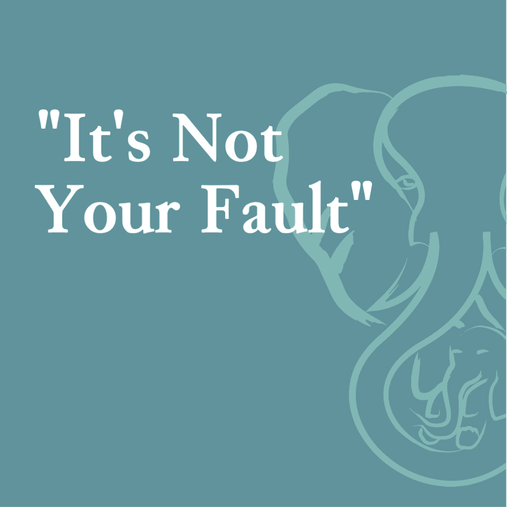 """""""It's Not Your Fault"""""""