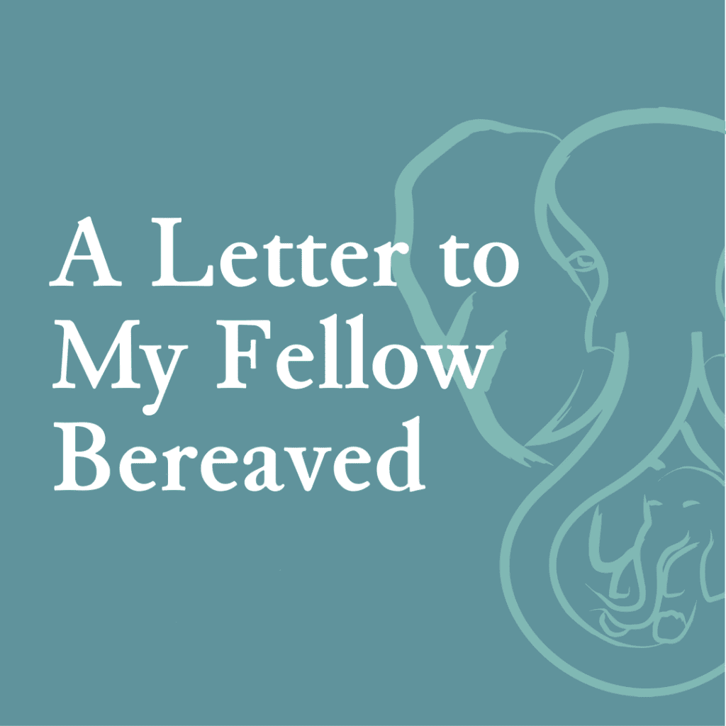 A Letter to My Fellow Bereaved