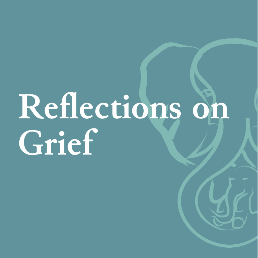 Reflections on Grief