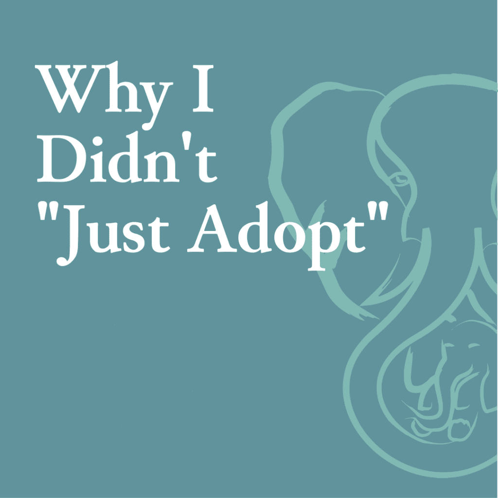 """Why I Didn't """"Just Adopt"""""""