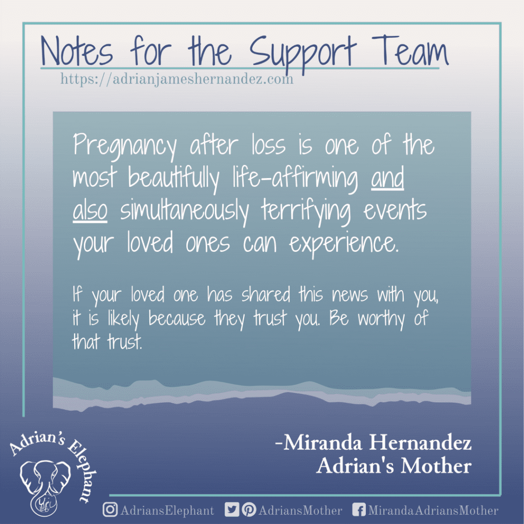 Notes for the Support Team -  Pregnancy after loss is one of the most beautifully life-affirming and also simultaneously terrifying events your loved ones can experience.  If your loved one has shared this news with you, it is likely because they trust you. Be worthy of that trust. -Miranda Hernandez, Adrian's Mother