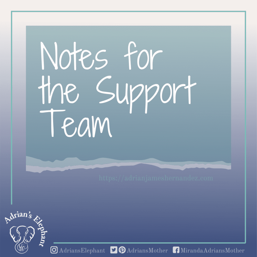 Notes for the Support Team Homepage