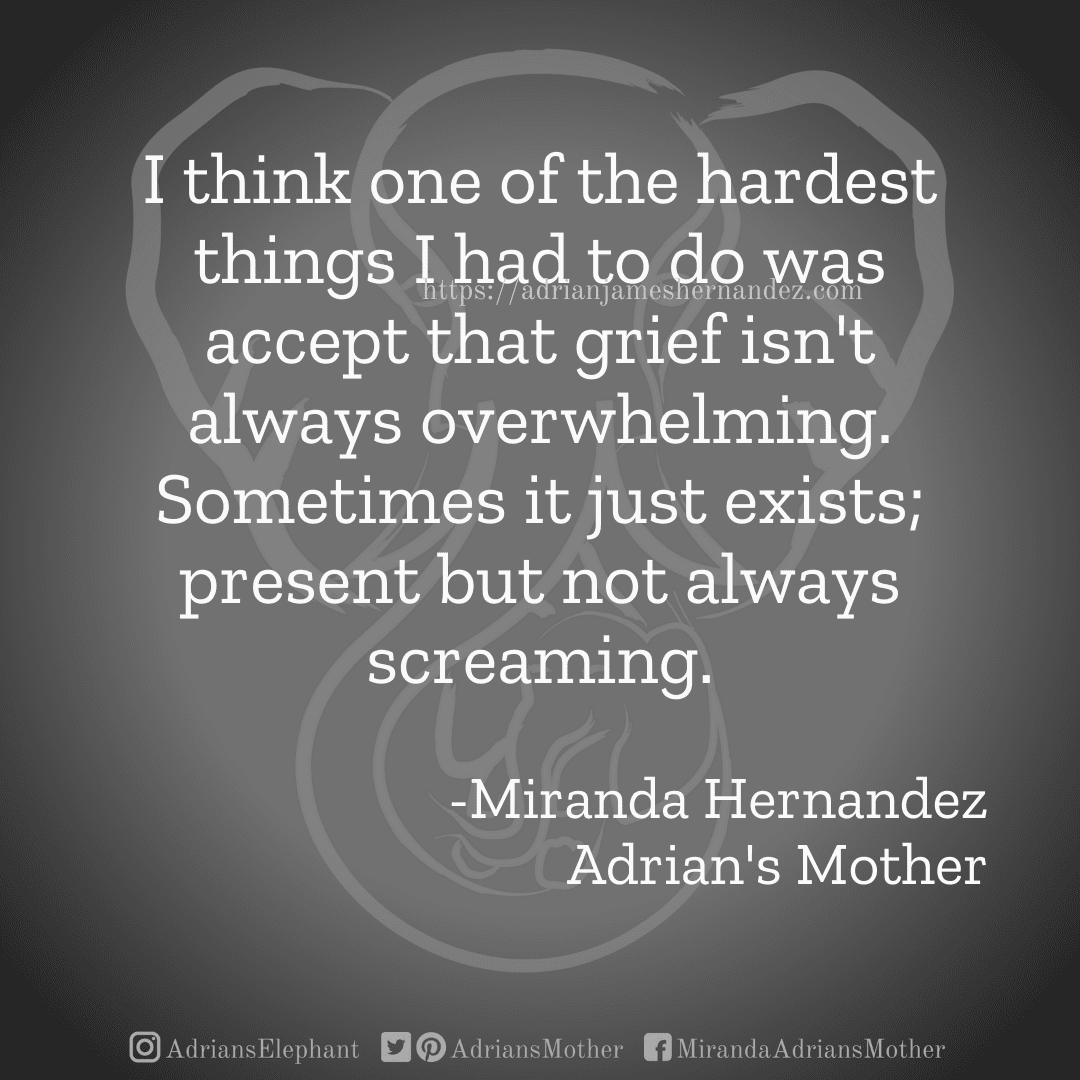 I think one of the hardest things I had to do was accept that grief isn't always overwhelming. Sometimes it just exists; present but not always screaming. -Miranda Hernandez, Adrian's Mother