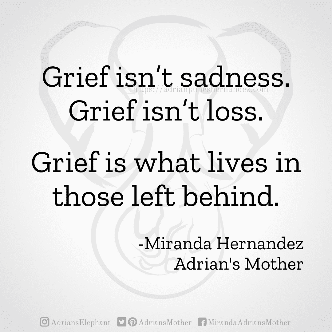 Grief isn't sadness. Grief isn't loss. Grief is what lives in those left behind. -Miranda Hernandez. Adrian's Mother