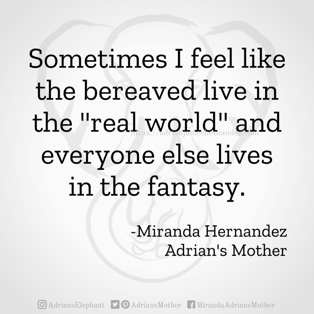 """Sometimes I feel like the bereaved live in the """"real world"""" and everyone else lives in the fantasy. -Miranda Hernandez, Adrian's Mother"""