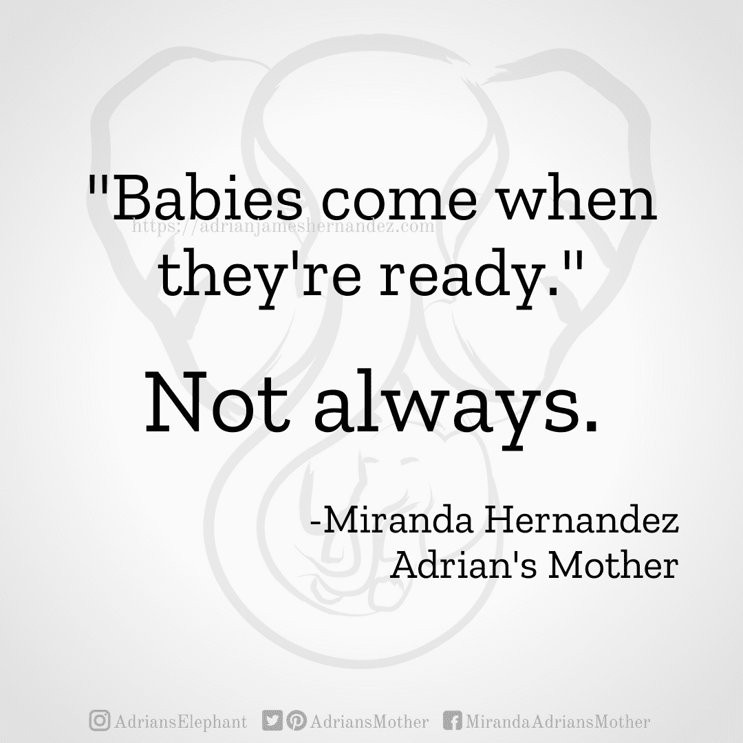 """""""Babies come when they're ready."""" Not always. -Miranda Hernandez, Adrian's Mother"""