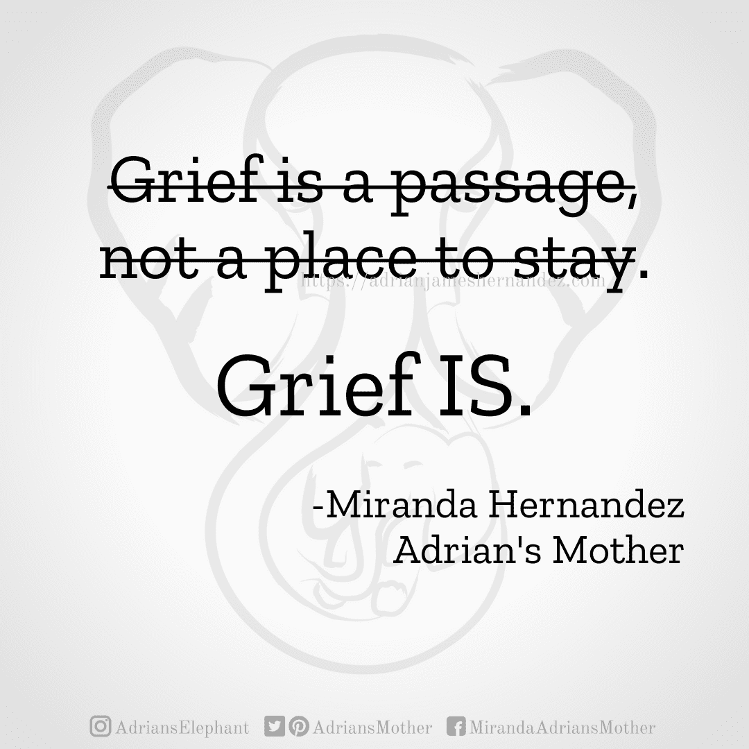 Original Statement: Grief is a passage, not a place to stay. Rewritten: Grief IS. -Miranda Hernandez, Adrian's Mother