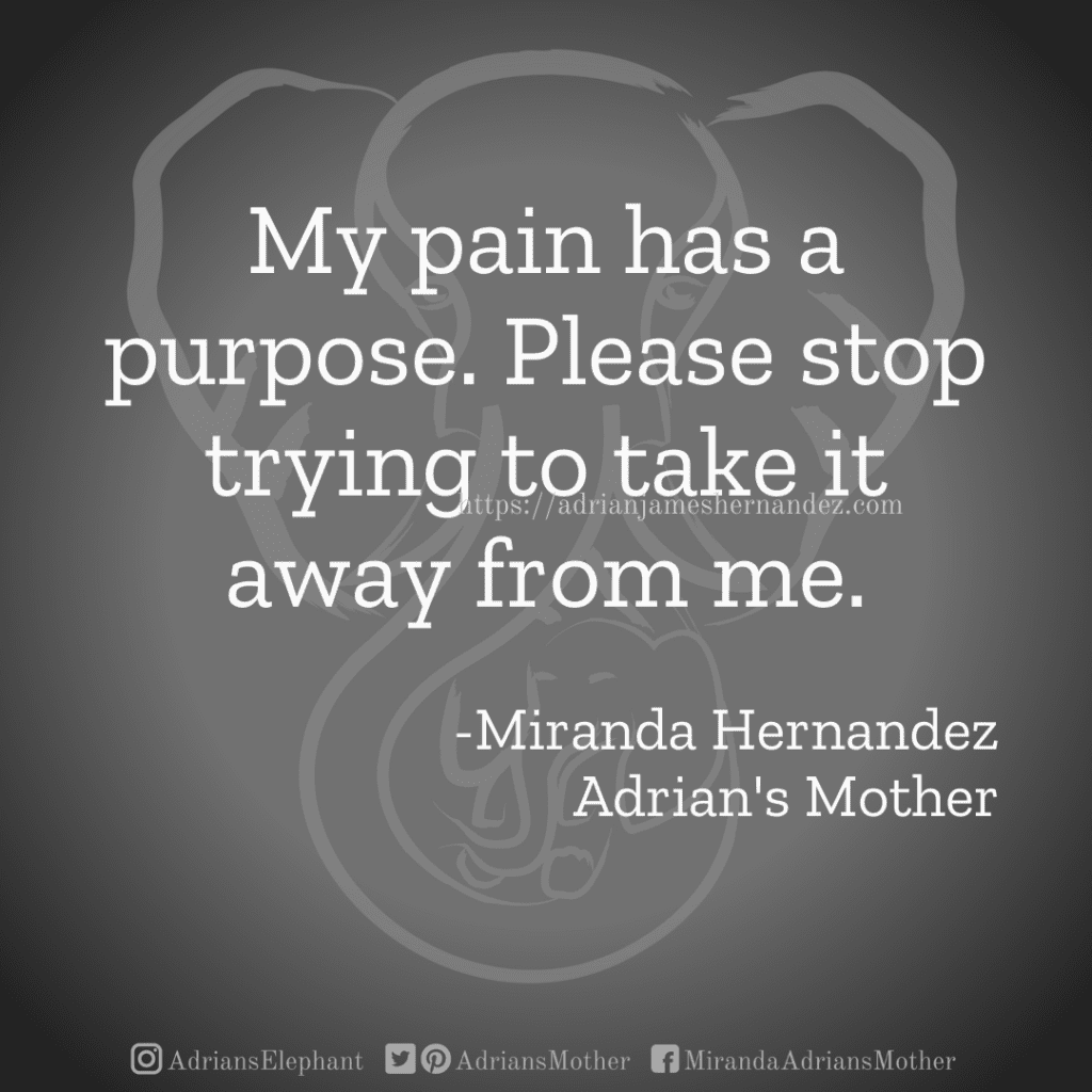 My pain has a purpose. Please stop trying to take it away from me. -Miranda Hernandez, Adrian's Mother