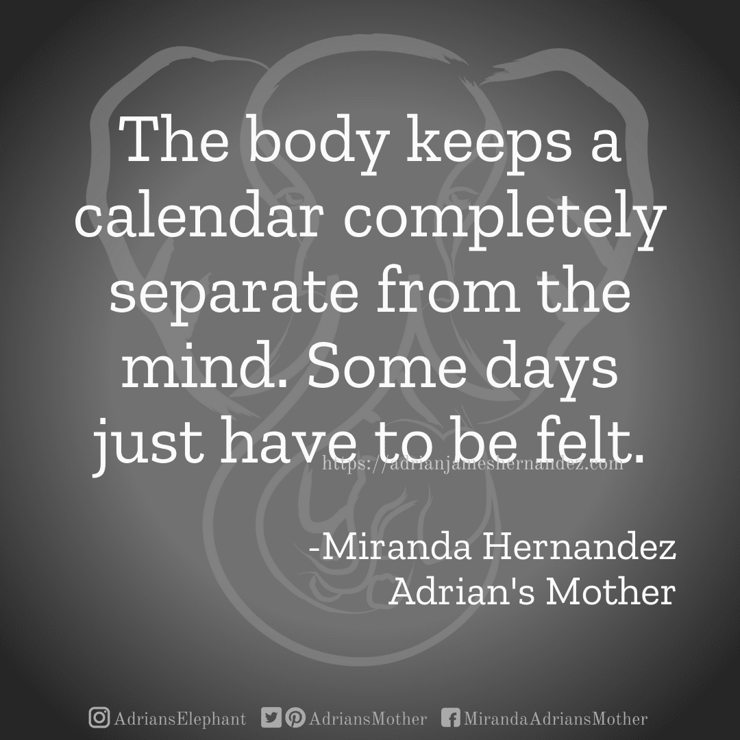 The body keeps a calendar completely separate from the mind. Some days just have to be felt. -Miranda Hernandez, Adrian's Mother