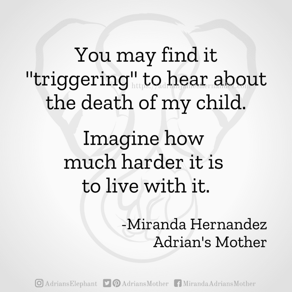 """You may find it """"triggering"""" to hear about the death of my child. Imagine how much harder it is to live with it. -Miranda Hernandez, Adrian's Mother"""