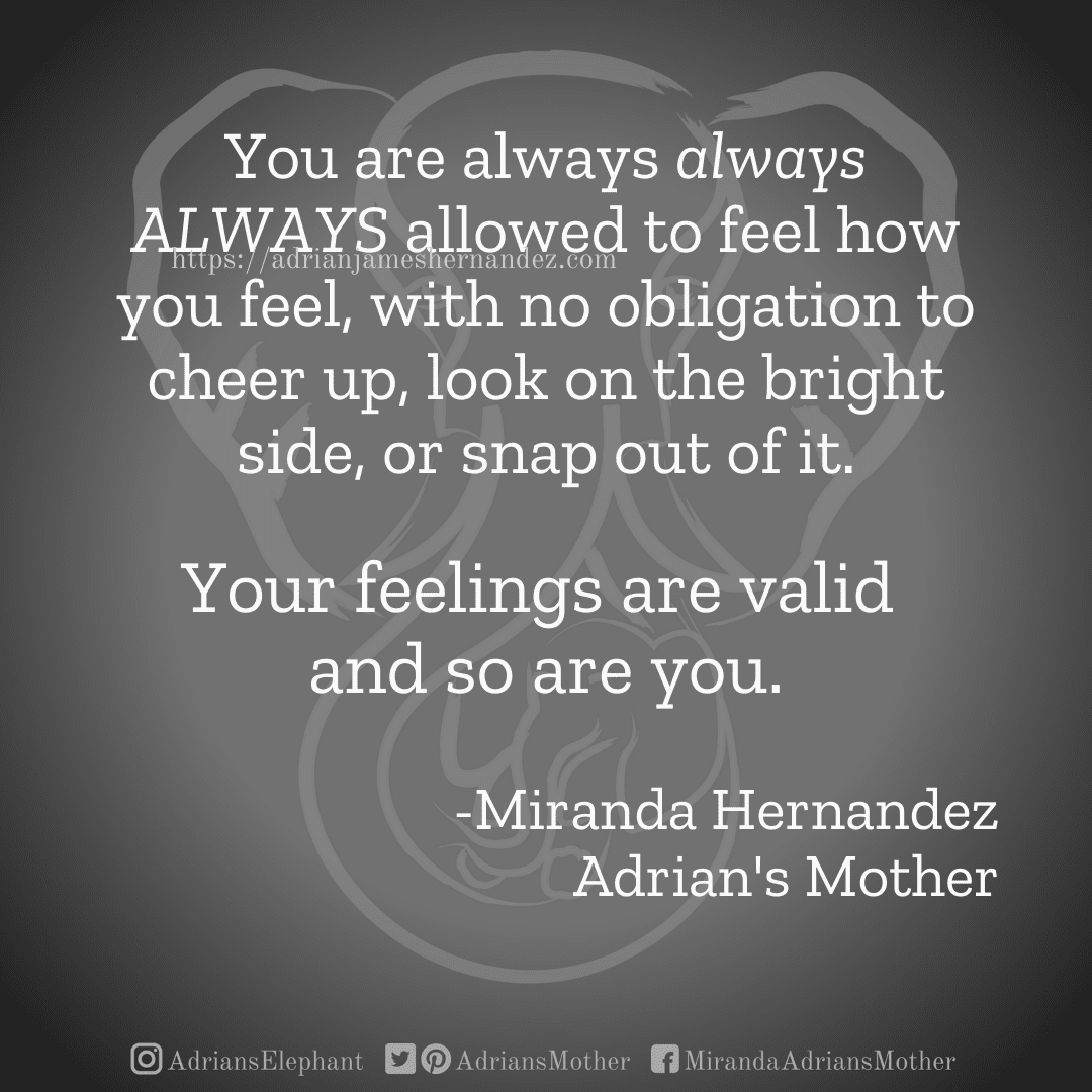 You are always always ALWAYS allowed to feel how you feel, with no obligation to cheer up, look on the bright side, or snap out of it. Your feelings are valid and so are you. -Miranda Hernandez, Adrian's Mother