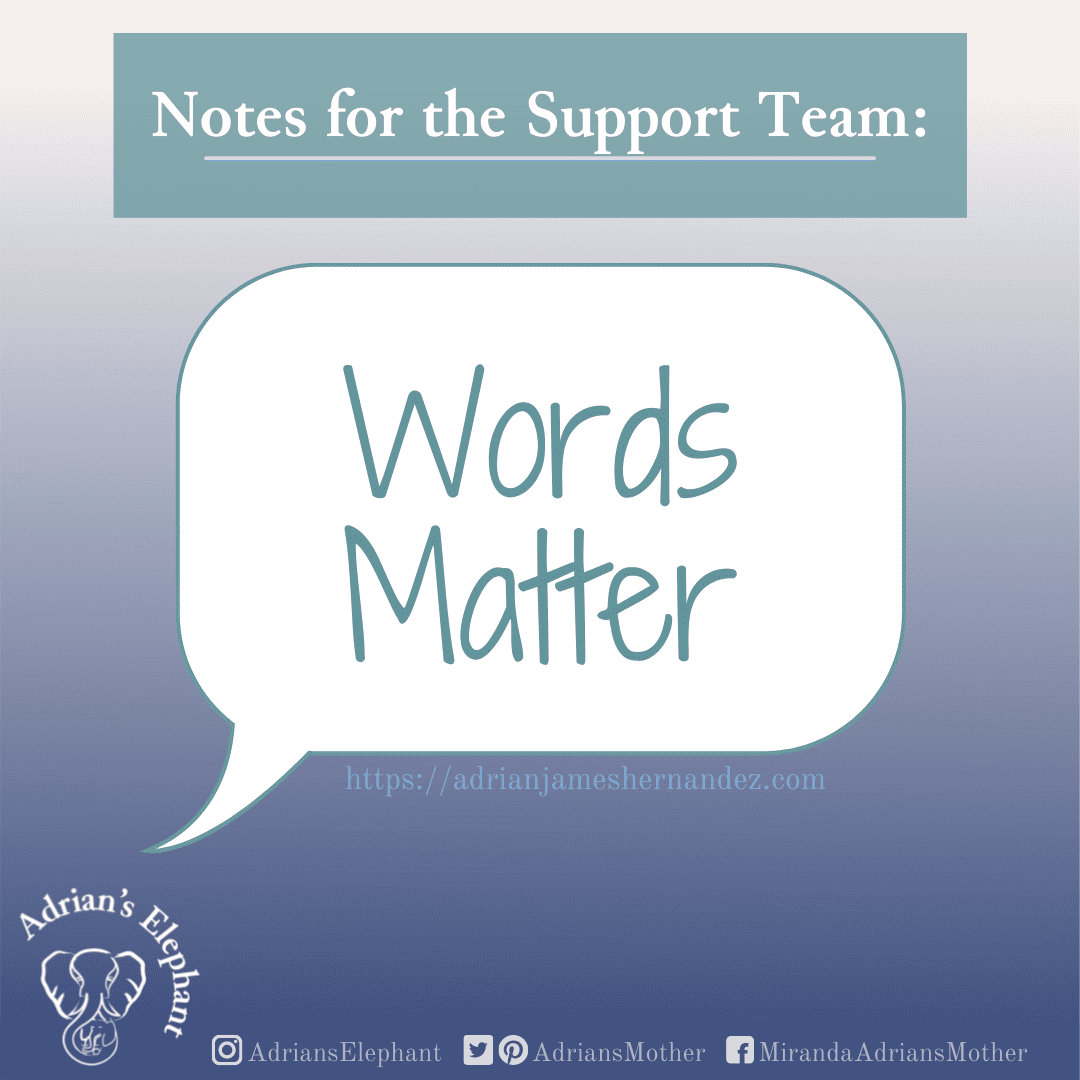 """Graphic design with """"Notes for the Support Team"""" in white text on green background. Underneath is a white speech bubble with """"Words Matter"""". The entire piece is on a gradient background fading from light cream at the top to dark blue at the bottom"""