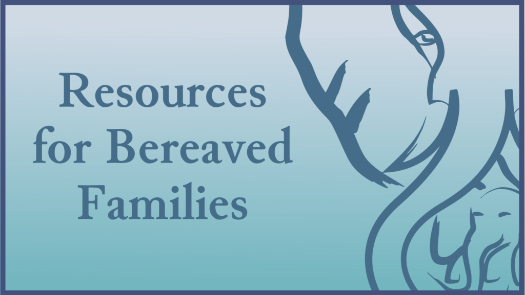 Resources for Bereaved Families after the Loss of a Child