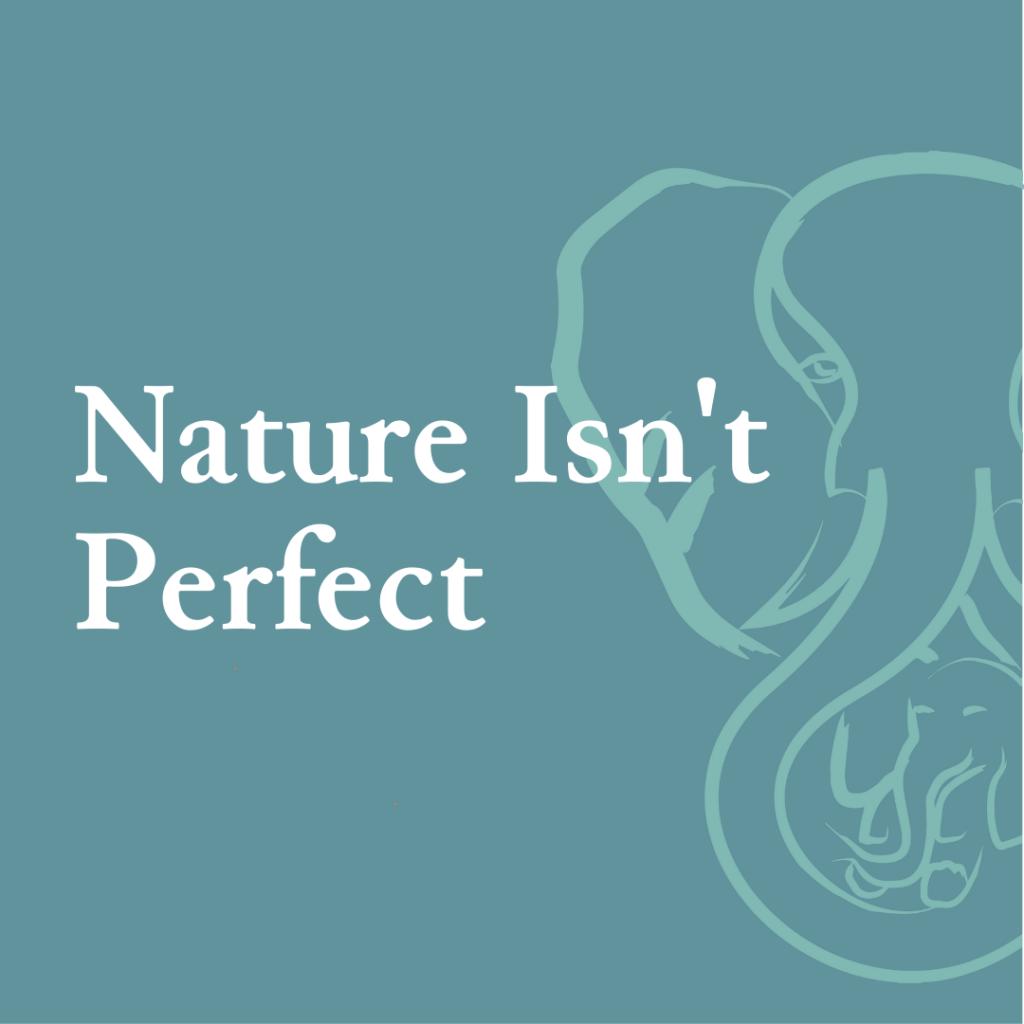 Nature Isn't Perfect
