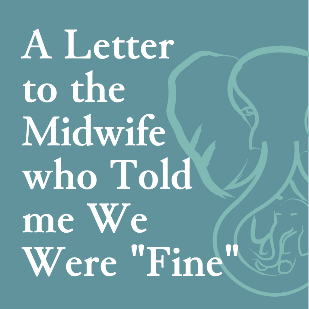 """A Letter to the Midwife who told me we were """"Fine"""""""