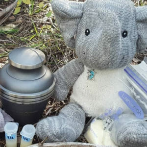 Adrian's Elephant and expired milk, Government Canyon State Natural Area, Texas (Miranda Hernandez)